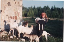 Goats on a farm in West Grey